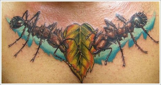 leaf tattoos (25)