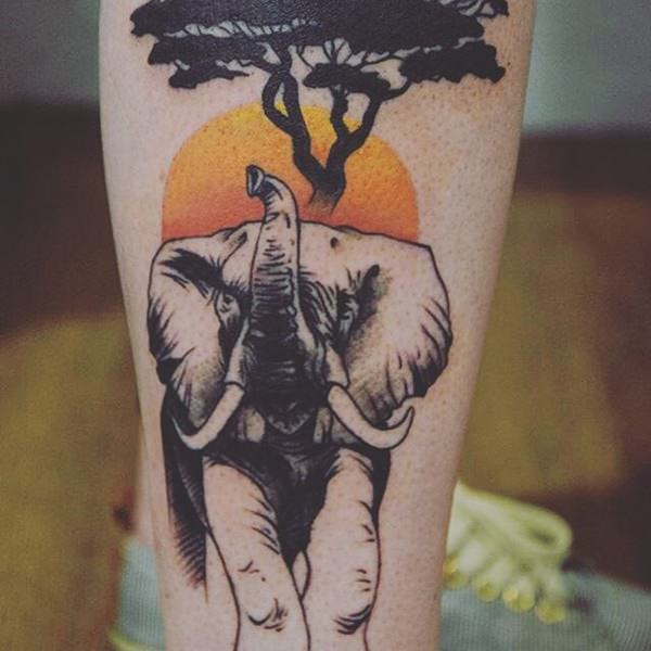 99 powerful elephant designs with meaning