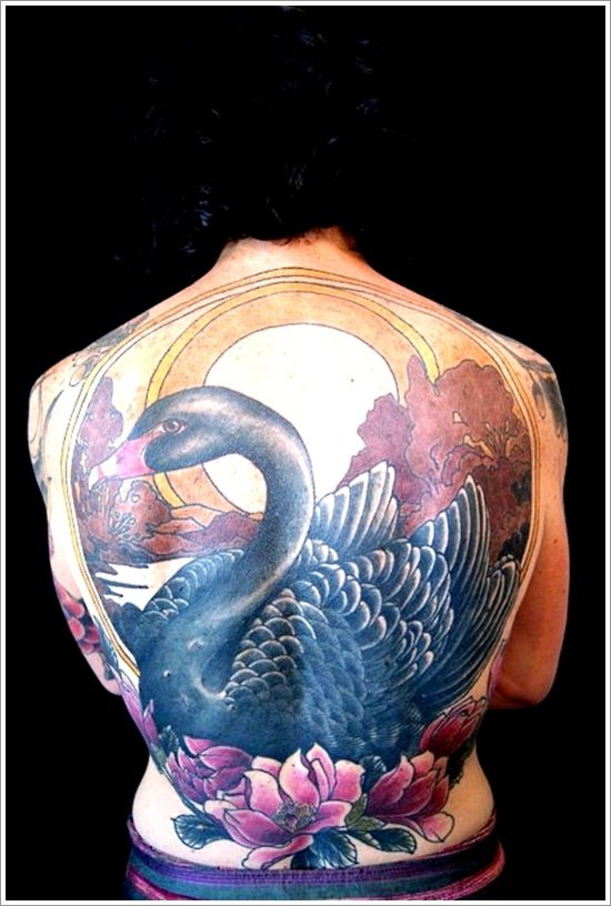swan tattoo designs (18)