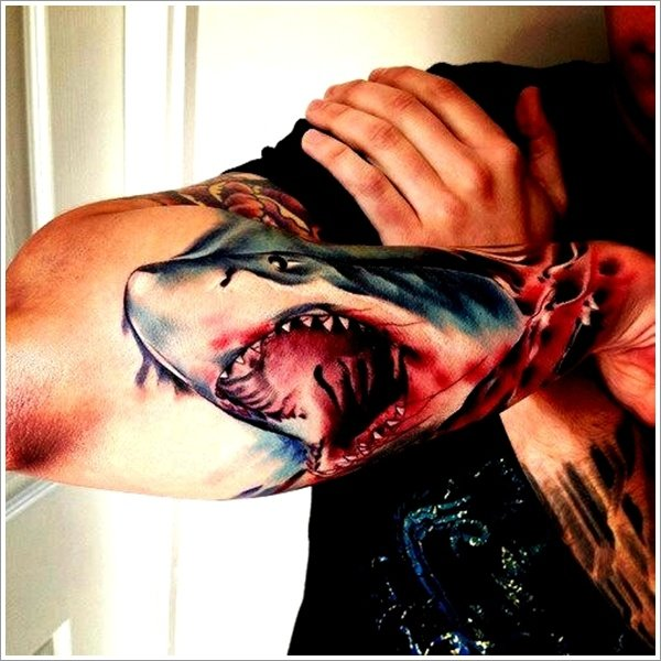 Shark tattoo designs (22)