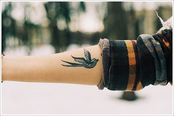 Swallow Bird Tattoo For Men