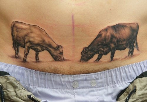 cow tattoo (6)
