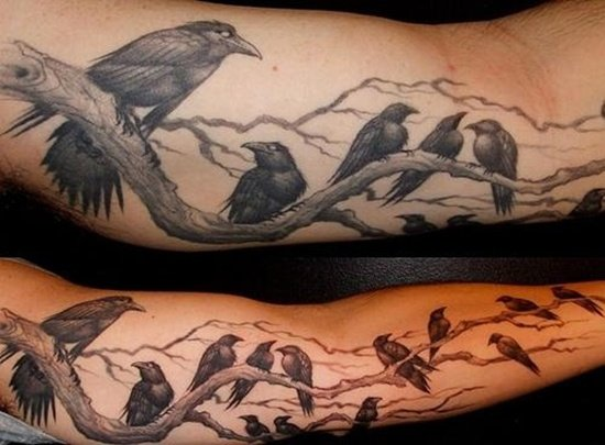 tribal meanings bird tattoo we of already depict a have tattoos raven mentioned, meanings variety