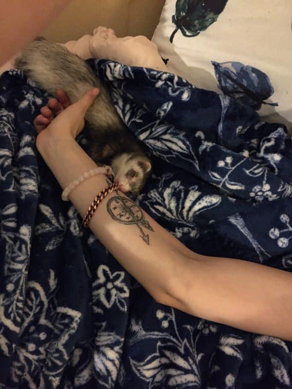 51230916-compass-tattoos