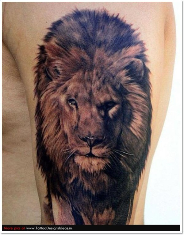 40 most original lion tattoos unleashing your inner beast. Black Bedroom Furniture Sets. Home Design Ideas