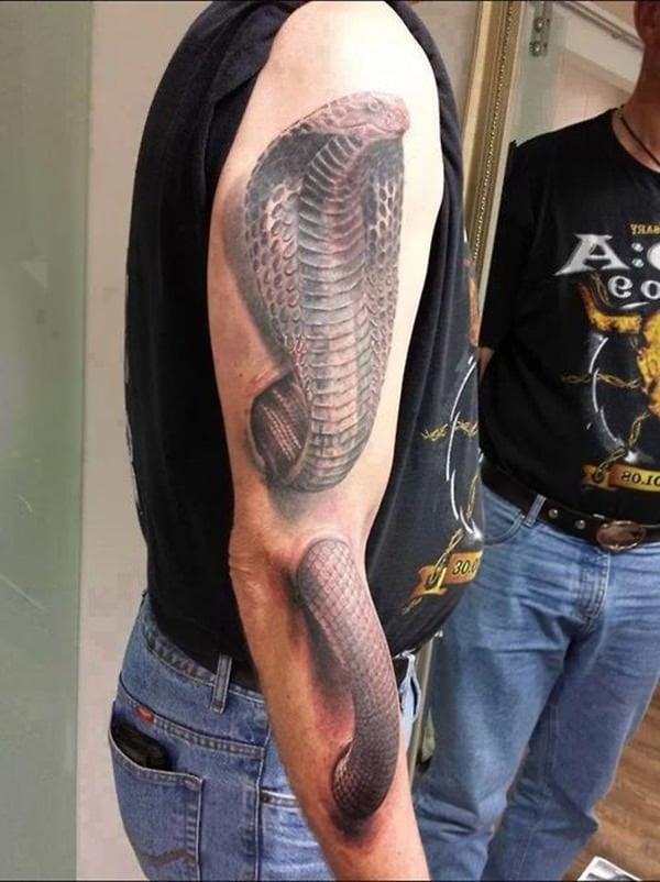 con rắn 3d