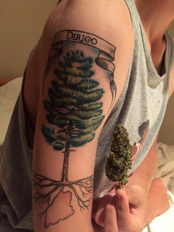 Tree Tattoos (14)