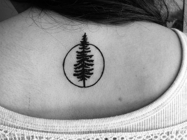 Tree Tattoos (19)